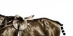 AH08-10 Three Quarter Horse dhs 6500 100x50 cms
