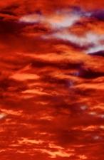 dulwich-sunset