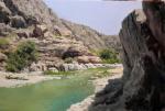 6317 Spring in Oman 60x90cm