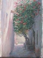 JB10-10 Bouganvilea Bastakiya dhs 3750 Oil on Canvas 23x40 cms SOLD