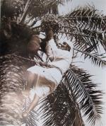 kd1-10-date-picker-dhs-gelatine-photograph-34x40-cms